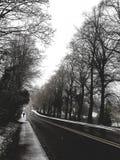 Ein kalter und einsamer Winter Lizenzfreie Stockfotografie