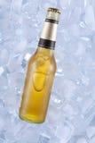 Ein kaltes Bier Stockfoto