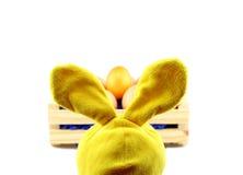 Ein Kaninchen mit Goldei für Ostern in einer Holzkiste Lizenzfreies Stockbild