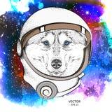 Ein Karikaturschlittenhund in einem Astronaut ` s Raumanzug Charakter im Raum Auch im corel abgehobenen Betrag vektor abbildung