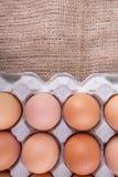 Ein Karton Hühnereien VIII Stockfotografie