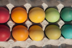 Ein Kasten gefärbte Eier mit Flaum Lizenzfreies Stockfoto