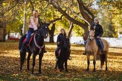 Ein Kerl, ein Mädchen und ein kleines Mädchen fahren auf Rappen und Ponys in einem Herbst parken Stockfoto