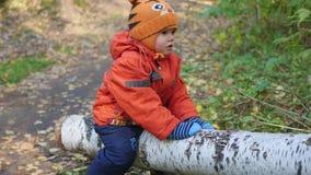 Ein Kind, das auf einem gefallenen Baum im Park schwingt stock video