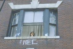 Ein Kind, das aus ihrem Wohnungsfenster, Süd-Bronx, NY heraus schaut stockbilder