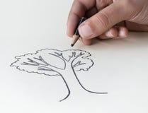 Ein Kind, das einen Baum mit einem sehr kurzen Bleistift stub، expressin zeichnet Lizenzfreies Stockfoto