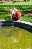 Ein Kind, das einen Teich untersucht. Stockfotografie