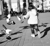 Ein Kind, das Tauben nachläuft Stockfotos