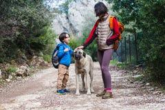 Ein Kind geht mit Mutter und Hund im Park lizenzfreie stockbilder