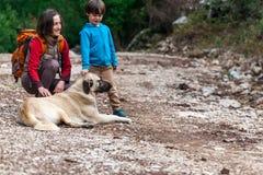 Ein Kind geht mit Mutter und Hund im Park stockbilder