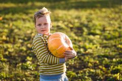 Ein Kind hält einen großen orange Kürbis lizenzfreies stockbild