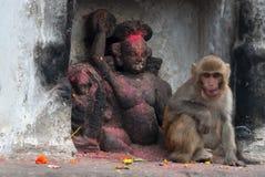 Ein kleiner Affe sitzt in einer Nische einer weißen Wand nahe der schwarzen Steinskulptur des Affe Gottes, das stupa Swayambudnat Stockbilder