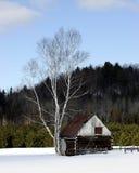 Ein kleiner alter Stall an einem Snowy-Tag Lizenzfreie Stockfotos