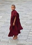 Ein kleiner buddhistischer Mönch in der kastanienbraunen Robe, die tief von fern schaut lizenzfreie stockfotografie