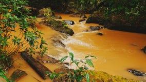 Ein kleiner Fluss vom Datanla fällt in den Dschungel Gelbes Wasser stock video footage