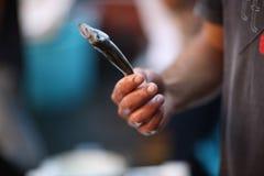 Ein kleiner frischer Fisch in den Händen Lizenzfreie Stockfotografie