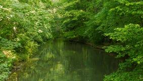 Ein kleiner Green River, Lausanne Lizenzfreies Stockfoto
