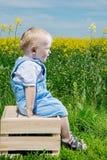 Ein kleiner Junge auf einem Holzkistesitzen lizenzfreies stockfoto