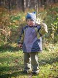 Ein kleiner Junge wirft Blätter im Herbstpark lizenzfreie stockbilder
