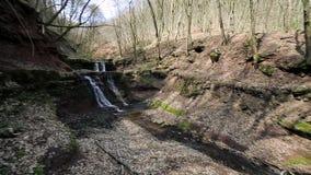 Ein kleiner Nebenfluss und Wasserfälle im Herbstwald stock footage