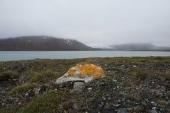 Ein kleiner orange Stein auf der leeren Seeküste in der Arktis lizenzfreie stockfotos