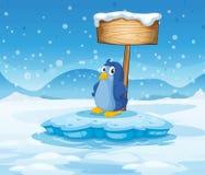 Ein kleiner Pinguin unter dem leeren hölzernen Schild Stockbilder
