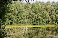 Ein kleiner See in Tignes Stockbild