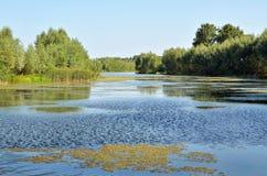 Ein kleiner See in Tignes Stockbilder
