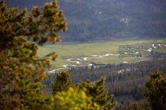 Ein kleiner Strom und ein Fluss, die durch eine Wiese an einem Sommer-Tag in Rocky Mountain National Park laufen lizenzfreie stockfotos