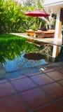 Ein kleiner Swimmingpool mit hölzernem geschnitztem Bett stockfotografie