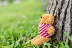 Ein kleiner Teddybär Lizenzfreies Stockfoto