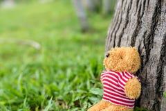 Ein kleiner Teddybär Lizenzfreies Stockbild