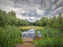 Ein kleiner Teich im wolkigen Wetter stockbild