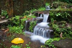 Ein kleiner Wasserfall durch die Steintreppe im Dschungel Lizenzfreie Stockbilder