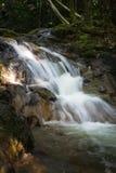 Ein kleiner Wasserfall in einem Wald lizenzfreie stockbilder