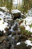 Ein kleiner Wasserfall im Wald Lizenzfreies Stockbild