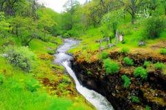 Ein kleiner Wasserfall nahe Lyle Washington lizenzfreies stockfoto