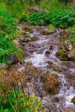 Ein kleiner Wasserfall zwischen den Steinen unter dem grünen Gras von lizenzfreies stockfoto
