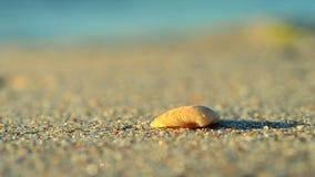 Ein kleines gelbes Oberteil liegt auf dem Sand des Strandes nahe den Wellen stock video footage