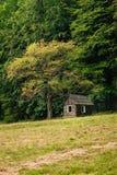 Ein kleines Holzhaus unter einem Baum stockfoto