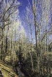 Ein kleines, klein, Fluss stockfotografie