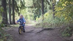 Ein kleines Mädchen auf einem Fahrrad reitet durch den Herbstwald stock video