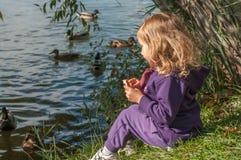 Ein kleines Mädchen, das auf Enten einer Seeseite und -fütterung sitzt Lizenzfreie Stockfotografie