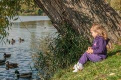 Ein kleines Mädchen, das auf Enten einer Seeseite und -fütterung sitzt Lizenzfreies Stockbild