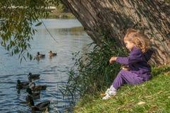 Ein kleines Mädchen, das auf Enten einer Seeseite und -fütterung sitzt Lizenzfreie Stockfotos