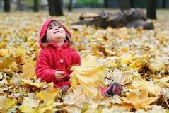 Ein kleines Mädchen in den gelben Blättern Stockfotografie