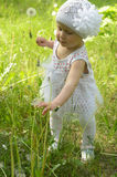 Ein kleines Mädchen geht glücklich unter dem Löwenzahn Lizenzfreie Stockfotografie