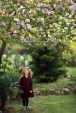 Ein kleines Mädchen kräuselte sich in einem Plaidkleid unter einem blühenden Apfelbaum Lizenzfreie Stockfotografie