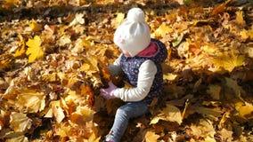 Ein kleines Mädchen läuft und fällt in einen Stapel von gelben Blättern, Freude, Glück, ein warmer Herbsttag stock video footage