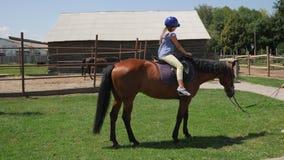 Ein kleines Mädchen sitzt auf einem Pferd in einem Sturzhelm stock video footage